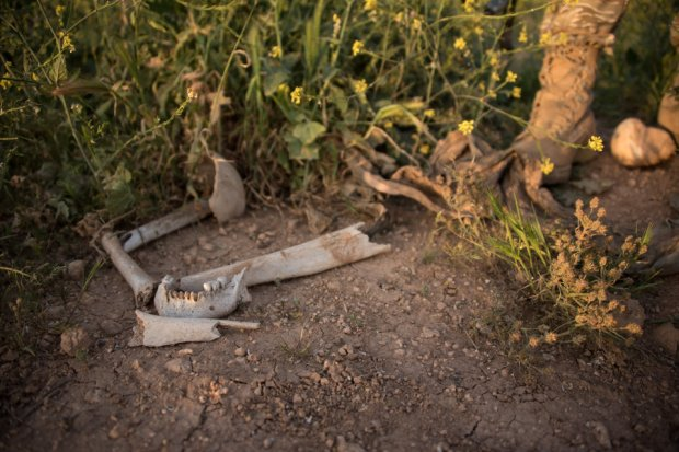 One of many mass graves in Sinjar, Iraq, where thousands of Yazidis were exceuted and buried by ISIS in 2014. Photo taken April 4, 2016.